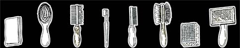 Different Types of Grooming Brushes